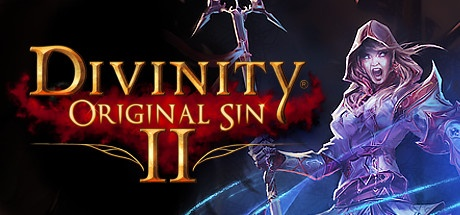 Divinity Original Sin 2 PC Download Free InstallShield