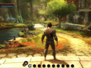 Kingdoms of Amalur Reckoning image 5